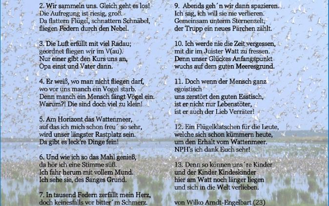 Wattliebe - von Wilko Arndt-Engelbart