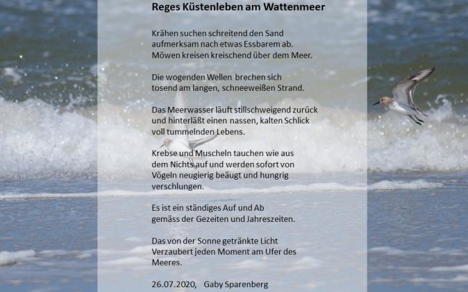 Reges Küstenleben am Wattenmeer - von Gaby Sparenberg